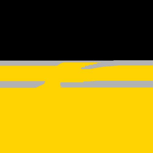gemeente-tholen